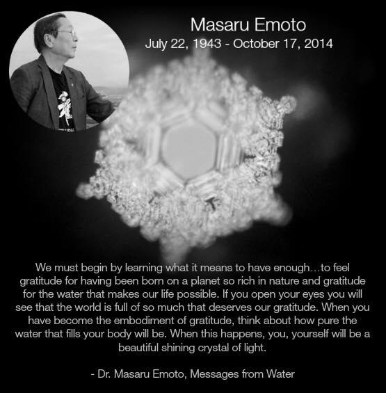 Dr Masaru